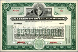 New England Gas and Electric Association