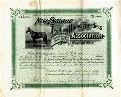 New England Trotting Horse Breeders Association - Boston, Mass. 1895