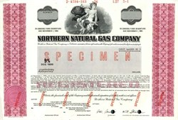 Northern Natural Gas Company (Became Enron)  - Delaware 1976