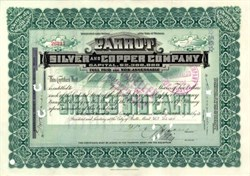 Parrot Silver and Copper Company 1907 - Montana