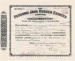 Petoong Java Rubber Estates, Limited 1910