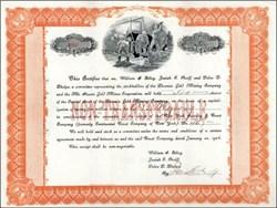 Phoenix Gold Mining Company 1904