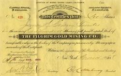 Pilgrim Gold Mining Company -  Sierra County, California 1888