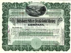 Pittsburg Silver Peak Gold Mining Company - Esmeralda County, Nevada -1914