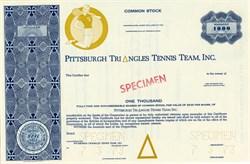 Pittsburgh Triangles Tennis Team, Inc. (World Team Tennis )  - Pennsylvania 1973