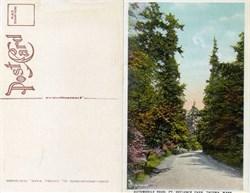 Postcard from Automobile Road, PT. Definance Park Tacoma, Washington