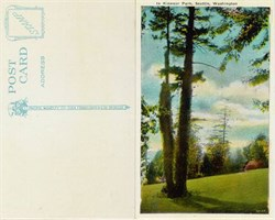 Postcard from Kinnear Park Seattle, Washington