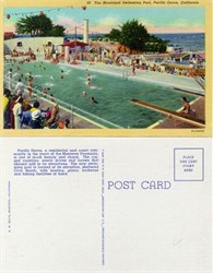 Postcard from the Municipal Swimming Pool, Pacific Grove, California