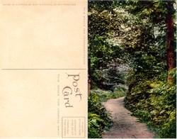 Postcard from Woodland Park Seattle, Washington