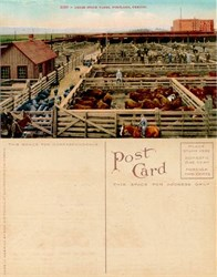 Postcard of the Union Stock Yards, Portland, Oregon