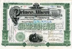 Prince Albert Mining Company - Cripple Creek, Colorado - 1896
