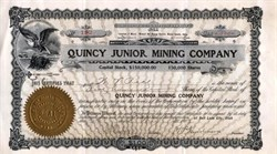 Quincy Junior Mining Company - Dateline Salt Lake City - Mineral Hill Mining District, Blaine County, Idaho - 1907