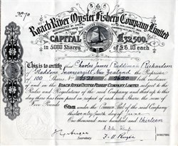Roach River Oyster Fishery Company Limited - 1913