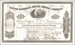 Santo Domingo Silver Mining Company - Mexico 1889
