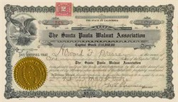 Santa Paula Walnut Association - Santa Paula, California 1922