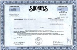 Shoney's, Inc. - Tennessee 2002