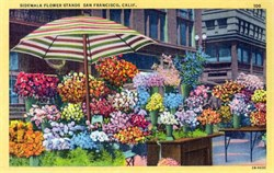 Sidework Flower Stands - San Francisco, California