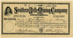Southern Belle Mining Company - Salisbury, North Carolina 1881