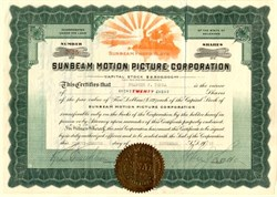 Sunbeam Motion Picture Corporation - Delaware 1917