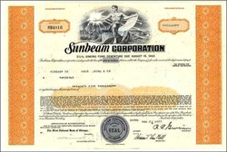Sunbeam Corporation 1970's - Pre Bankruptcy