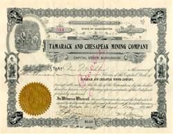 Tamarack and Chesapeak Mining Company