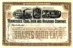 Tennessee Coal, Iron and Railroad Company 1901 issued to Julius S. Bache &Co.