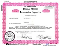 Thermal Ablation Technologies Corporation (Poker.com) - Florida 2001