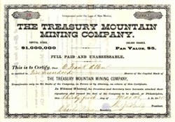 Treasury Mountain Mining Company - Silver City, Territory of New Mexico - 1885