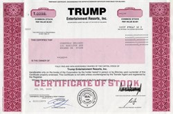 Trump Entertainment Resorts, Inc (Chief Executive Officer and Chairman, Donald Trump) - 2009