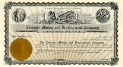 Triangle Mining and Development Company