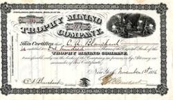 Trophy Mining Company - New York 1886