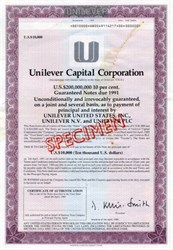 Unilever Capital Corporation of Delaware, 1989