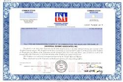 Universal Seismic Associates Inc. - Delaware