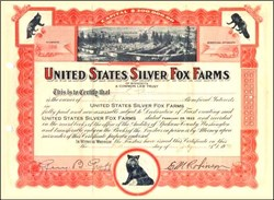 United States Silver Fox Farms 1923