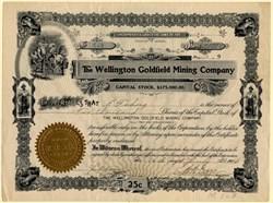 Wellington Goldfield Mining Company - Nevada. Esmeralda. Goldfield. - Organized in Territory of  Arizona 1906
