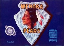 Wenoka Brand Crate Label - Indian and Arrowhead Vignette