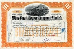 White Knob Copper Company, Limited - 1903