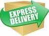 Express Delivery - Ships 1-3 Days