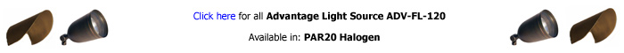 Advantage Light Source FL-120