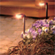 Lumiere Landscape Lighting - Pathway Lighting