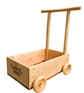 Dragonfly Push Cart