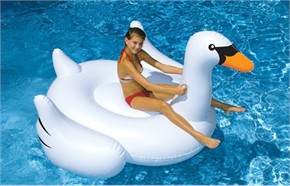 Giant Swan Inflatable Ride-On