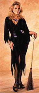 Adult Witch Costume - Bewitching Witch
