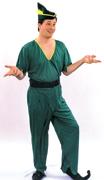 Adult Peter Pan/Elf Costume