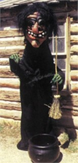 Witch Mascot Costume