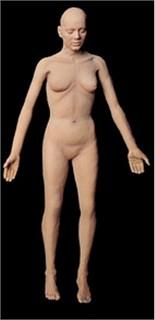 Female Flex Body