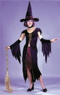Adult Witch Costume - Witchy Witch