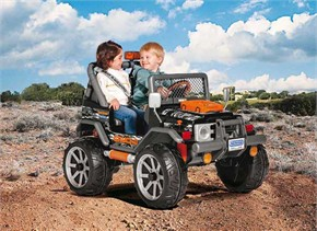 Peg Perego Gaucho Rock-in Ride On