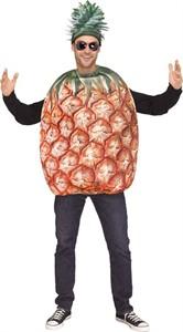 Adult Pineapple Costume - Funworld