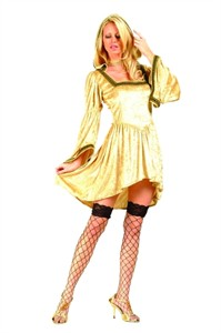 Adult Sexy Renaissance Costume